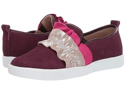 Elephantito Diva Sneaker (Toddler/Little Kid/Big Kid) (Plum) Girl