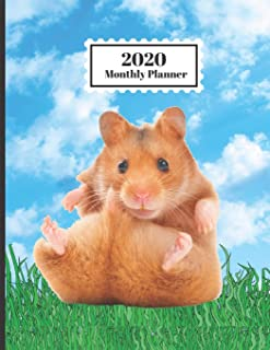 2020 Monthly Planner: Hamster In Grass Blue Sky Clouds Cute Design Cover 1 Year Planner Appointment Calendar Organizer And...