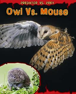 Best owl vs mouse Reviews