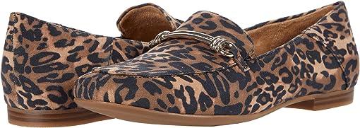 Brown Cheetah