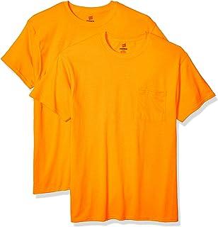 Hanes mens Men's Workwear Short Sleeve Tee (2-pack)