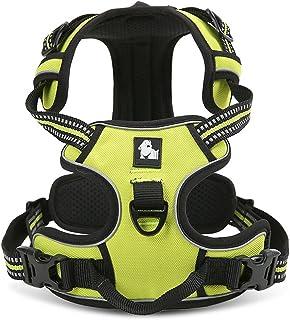 ViVi Bearの永続的な犬のハーネスベスト3 m反射安全ストライプ加減で犬によるパッドリング、大・中・小5 サイズ3色犬ハーネスリード (M : 22〜27インチ(56-69cm), グリーン)
