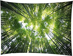 ENJOHOS Green Nature Forest Under Sky 3D Print Wall Art Hanging Large Wall Tapestry Decor for Bedroom Dorm, W79 x T59