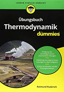 Übungsbuch Thermodynamik für Dummies