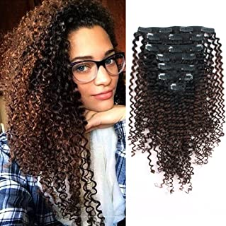 Sassina Thickness Double Wefts Clip In Extensions For African American Black Women Kinky Curly 3C 4A 1B Off Black Fading into Light Chocolate Brown 7 Pieces-Set 17 Clips KC 1BT4 16 Inch
