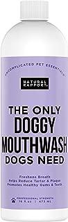 Natural Rapport Dog Mouthwash - The Only Doggy Mouthwash Dogs Need, Dog Breath Freshener Water Additive for Dental Care (16 fl oz.)