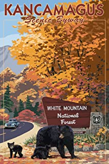 White Mountain National Forest, New Hampshire - Kancamagus Scenic Byway (12x18 Art Print, Wall Decor Travel Poster)