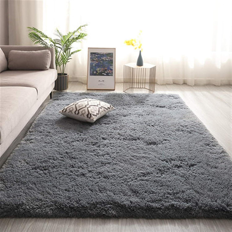 HaushaltKuche Long Hair latest Living Room Sofa Coffee Rug 5 popular Carpet Table