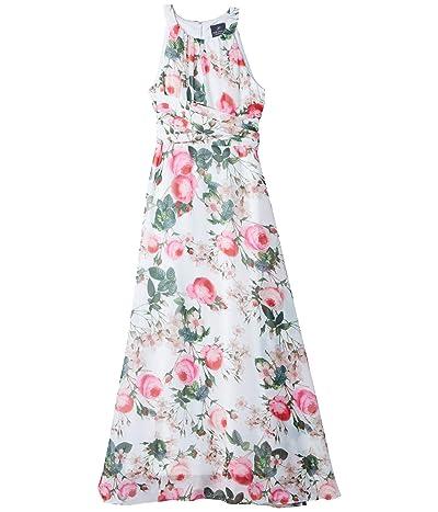 Adrianna Papell Rose Magnolia Chiffon Midi Halter Dress (Pink Multi) Women