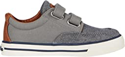 Grey Chambray/Canvas/Tan Burnished/Off-White Polo Print