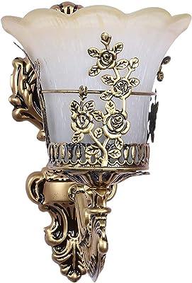 WhiteRay Modern Flower Design Cage Golden Antique Contemporary Glass Wall Lamp Light