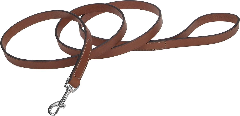 Coastal Pet Products Circle T Oak Tanned Leather Dog Leash, 5 8  x 4', Tan