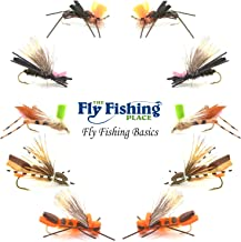 The Fly Fishing Place Basics Collection - Foam Hoppers Dry Fly Assortment #2-10 Dry Fishing Grasshopper Flies - 5 Patterns - Hook Size 10