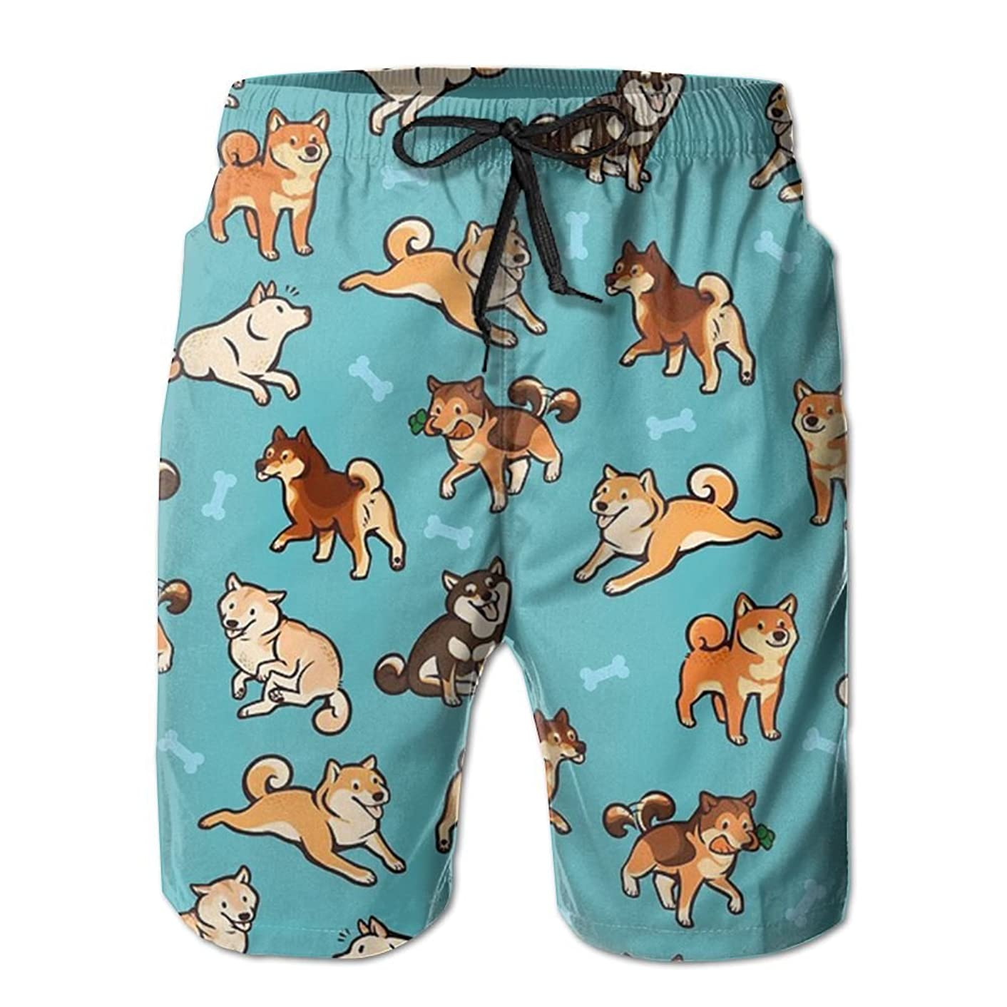 AP.Roon Men's Boy's Novelty Quick Dry Swim Trunk Japanese Akita Sports Beachwear With Mesh Lining