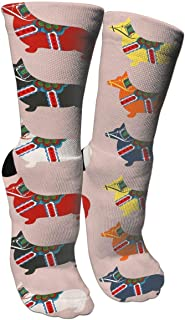 Pembroke Welsh Corgi Socks Crew Sock Crazy Socks Long Tube Socks Novelty Fun for Women Teens Girls