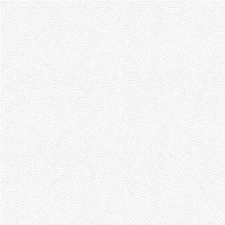 LA WEB DEL COLCHON Polipiel para tapizar 0,5 Ml. Polipiel (Ancho 1,40 MT.) Color Blanco