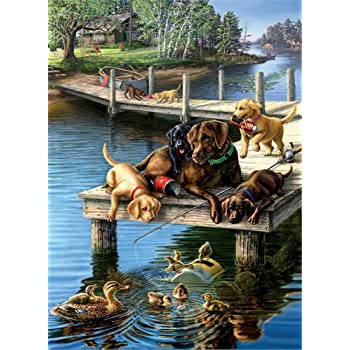 DIY Oil Painting Paint by Numbers for Adults Kids Painting on Canvas 40 6 Dogs, Without Frame 50 cm 16 20 inch