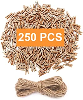 aHeemo Mini Clothespins, Mini Natural Wooden Clothespins with Jute Twine, Multi-Function Clothespins Photo Paper Peg Pin Craft Clips (Natural 250 Pcs)