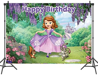 Princess Theme Party Background Cartoon Party Background Children Birthday Party Photo Background Photography Banner Birth...