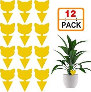 Stingmon 12 Pack Sticky Fruit Fly and Fungus Gnat Trap Killer Indoor and Outdoor Protect The Plant, Non-Toxic and Odorless, 04-Shape