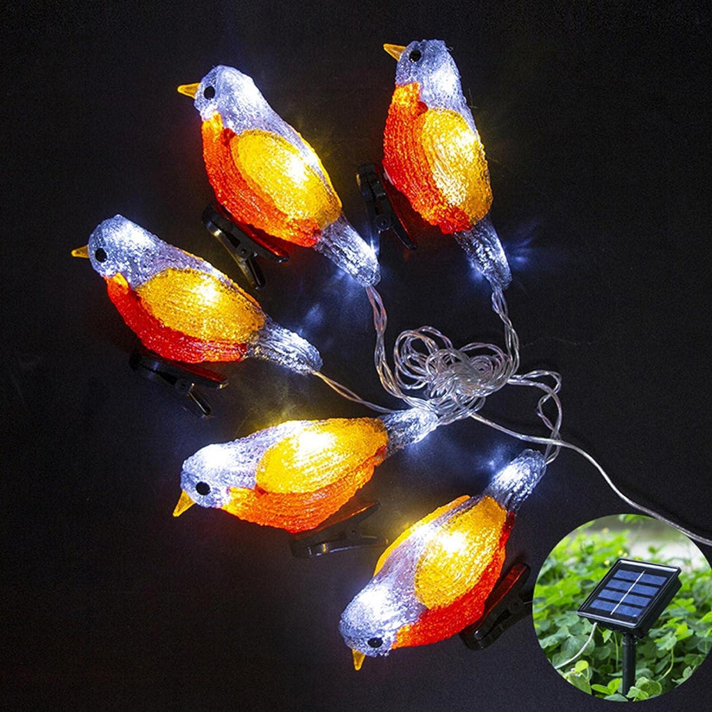 EKDJKK Solar Light service Sales results No. 1 Acrylic Lights Outd String Bird