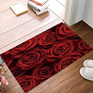 """Indoor Doormat for Home Entrance - 24"""" x 16"""", Blooming Red Roses Funny Welcome Rubber Washable Rug Floor Mat for Front Bac..."""