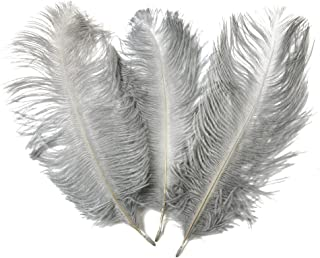 Ostrich Feather,Hgshow 20pcs Feathers 8-10inch(20-25cm) for Home Wedding Decor... Gray