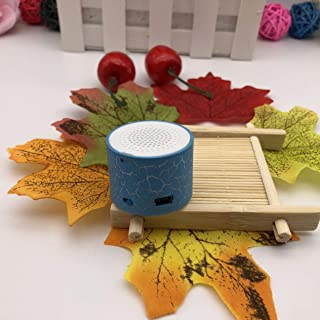 MX-388 Mini Speaker USB Flash Drive Micro SD/TF Card Music MP3 Player FM Radio Porcelain Plastic Speakers