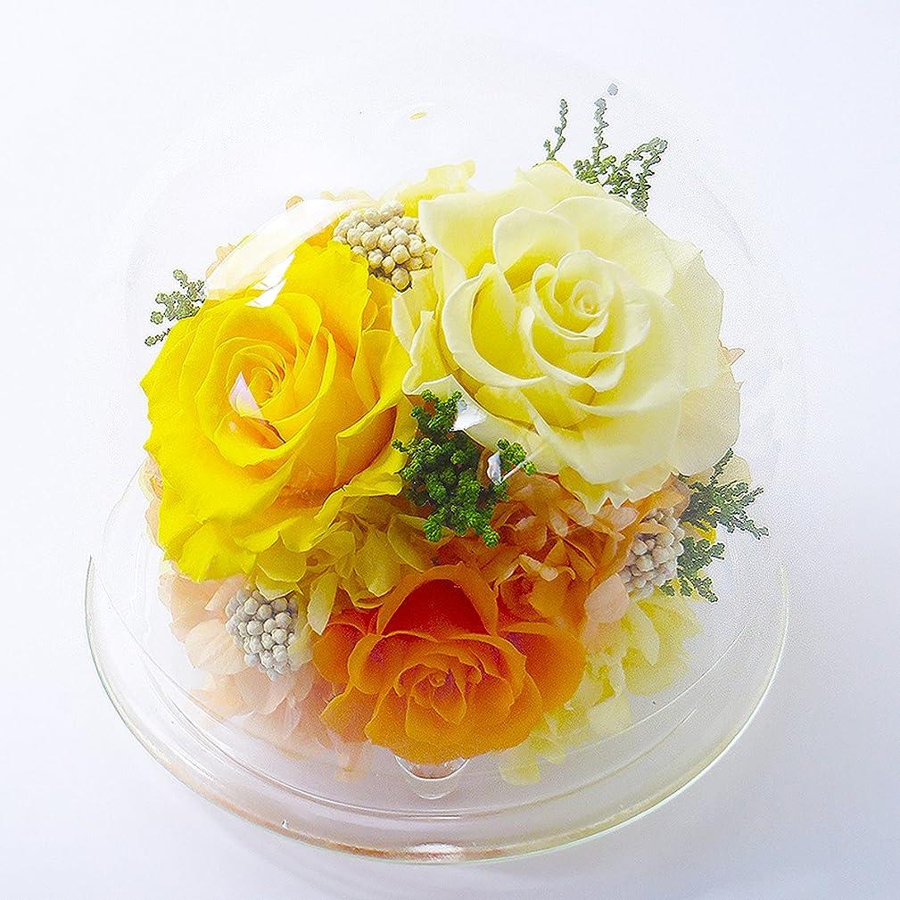 滅びる着実に音楽家【水色ギフトBOX】ガラスドーム〈L〉 【イエロー】/プリザーブドフラワー/母の日/父の日