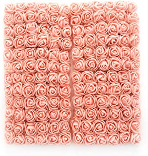 Best flower of peach Reviews