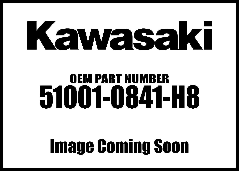 Kawasaki 2017 Max 63% OFF Ninja Tank Comp New supreme Ebony 51001-0841-H8 Oem Fuel