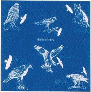 bandana for birds