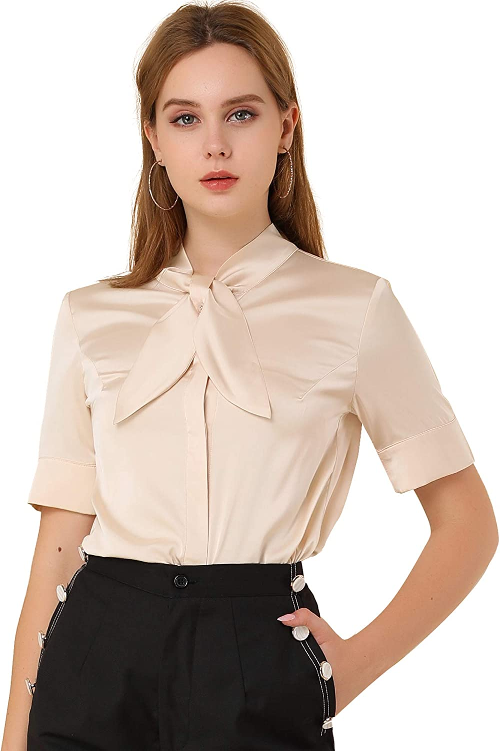 1950s Style Clothing & Fashion Allegra K Womens Satin Shirt Button Down Tie Neck Business Casual Blouse  AT vintagedancer.com
