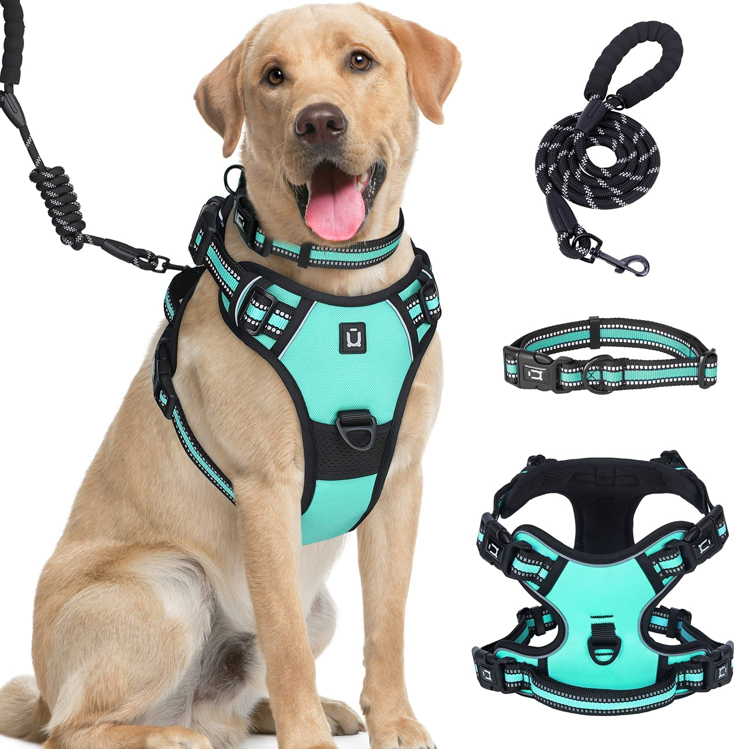Dog Same day shipping Harness Miami Mall for Small Dogs 4 Buck Waldseemuller Camo