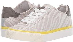 Light Grey White