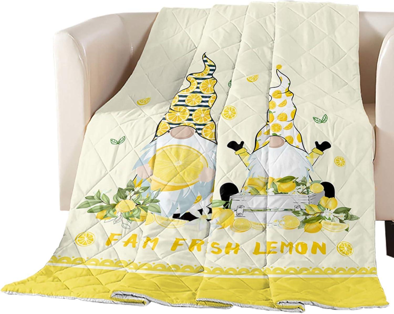 Comforter Duvet Insert Home Quilt Summer F Latest item Cute Farm Lemon Popular standard Fresh