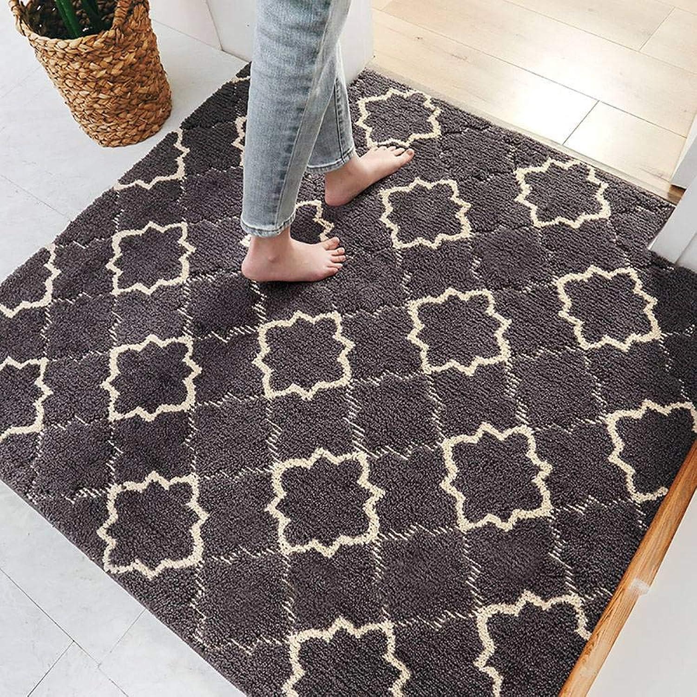Indoor Outdoor Doormat, Dust Removal Easy Clean Non-Slip Latex Backing Support Floor Mat -Dark grey-80x120Cm(31x47Inch)
