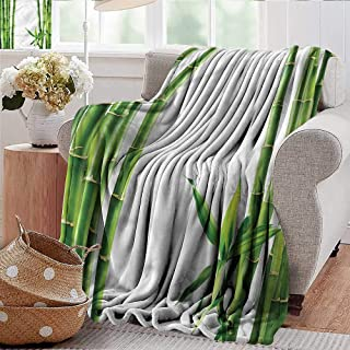 Xaviera Doherty Bed Blanket Asian,Branches of Bamboo Plant Warm Microfiber All Season Blanket 30