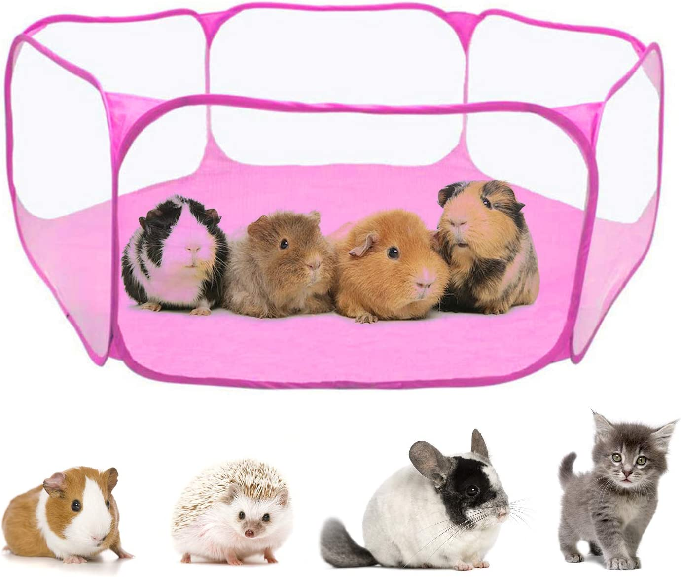 Rypet Guinea Los Angeles Mall Pig Free shipping on posting reviews Accessories Rabbits Hamster C for