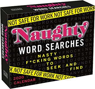 Not Safe for Work 2020 Calendar: Naughty Word Searches