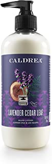 Sponsored Ad - Caldrea Hand Lotion, For Dry Hands, Made with Shea Butter, Aloe Vera, and Glycerin and Other Thoughtfully C...