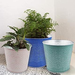 گلدان های گیاهی برای گیاهان - مجموعه ای از 6 گلدان گلدان فلزی گالوانیزه داخلی و خارجی برای دکوراسیون دفتر و باغ پاسیو