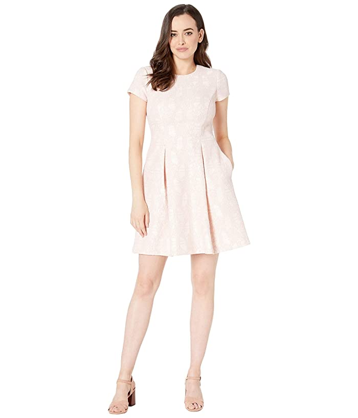 Vince Camuto Bonded Lace Short Sleeve Fit and Flare Dress (Blush) Women