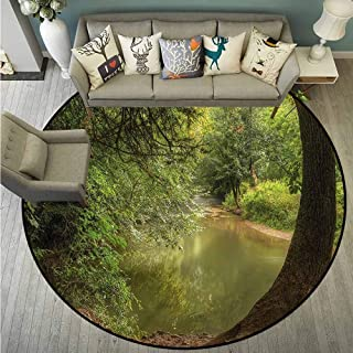Round Carpets,Nature,Enchanted Forest with Trees,Rustic Home Decor,3'7