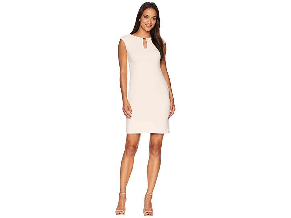 LAUREN Ralph Lauren Petite Nadine Cap Sleeve Day Dress (Rose Mist) Women