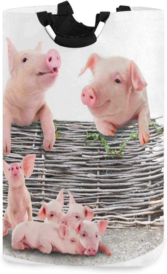 Oyihfvs Pink Chicago Popular products Mall Pig Piglet Piggies Fol Basket Hamper Bucket Laundry