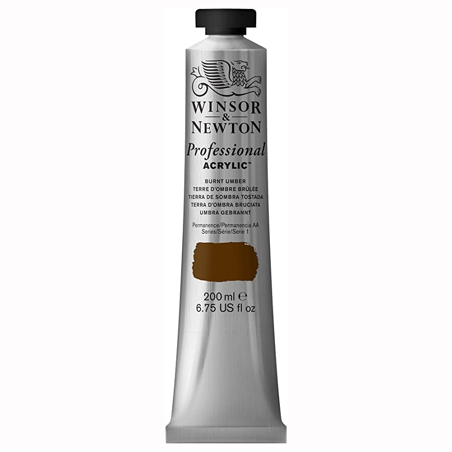 Winsor & Newton Professional Acrylic Color Paint, 200ml Tube, Burnt Umber