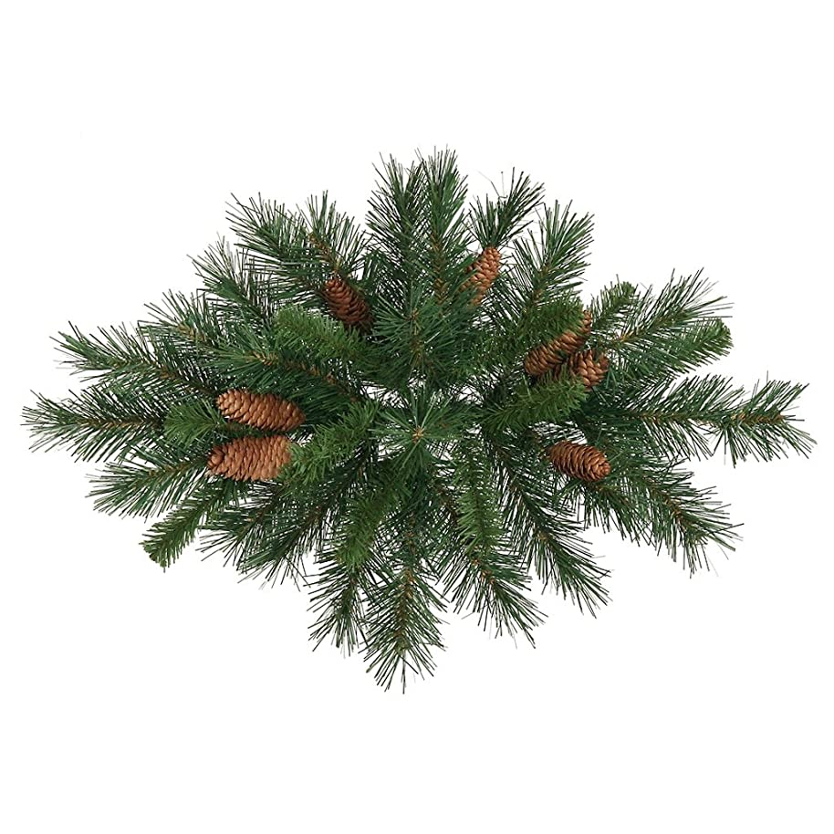 Vickerman Cheyenne Swag, 32-Inch, Pine Green