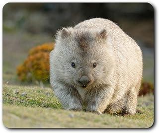RM2295 Mauspad mit süßem Wombat Australien Tier 23,5 x 19,6 cm (9,3 x 7,7 Zoll) für Computer und Laptop, Büro, Geschenk, rutschfeste Unterseite