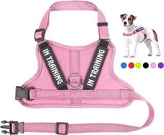 NOYAL in Training Dog Harness, Soft Breathable Mesh Dog Vest Harness - Adjustable 3M Reflective Outdoor Pet Vest with 2 Re...